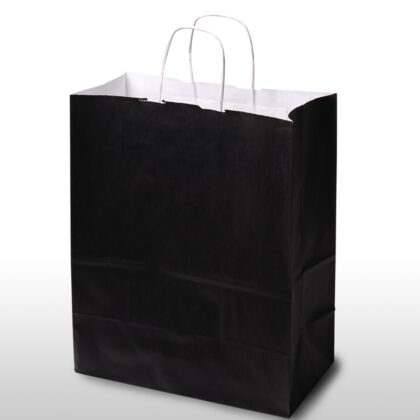 Plain Black Bags – Twisted Handles  (200 Pcs)